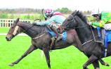 THE PUNTER'S EYE: Three horses to follow at Kilbeggan on Friday evening