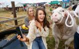 From the archives: Take a trip down memory lane to the 2015 Tullamore Show
