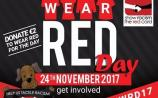 Wear read in Laois and Show Racism the Red Card #WRD17