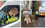 Offaly's Ted goes missing for months, joins the guards and goes viral