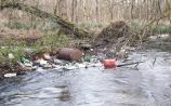 Extra funding for litter initiatives called for  to tackle illegal dumping  in Offaly
