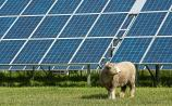 Green light for large solar farm in Offaly