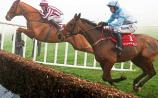 Horse racing tips for Limerick, Gowran Park this weekend