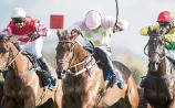 THE PUNTER'S EYE: Three horses worth backing this weekend