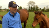 Charity cycle event to take place in memory of Pat Smullen