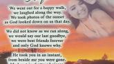 Offaly teen pens touching poem in memory of best friend killed on road