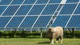 Plans for massive solar farm in Offaly on hold