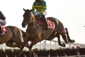 Grand National winner Minella Times' Midlands roots