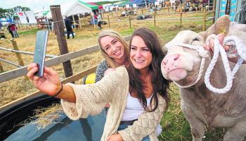 Everything you need to know about the 2018 Tullamore Show