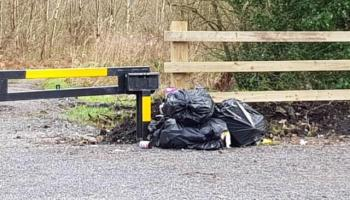 621 litter / waste complaints in Offaly