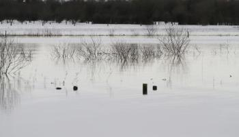 Calls in Offaly for millions of tonnes of peat silt to be dredged from Shannon