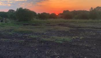 Opposition to historic Offaly bog development 'can't be ignored'