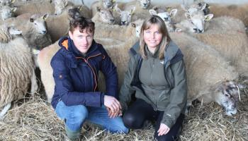 Living the organic dream on a farm in Carrig