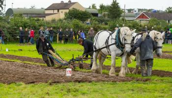 Ploughing Faithful furrows since 1936