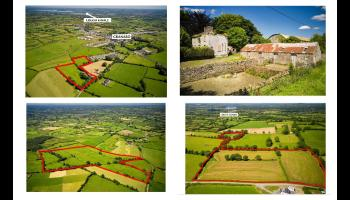 Longford farm fetches over €1 million in online auction