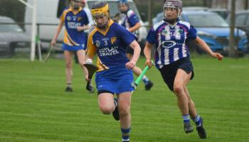 Offaly senior camogie final on Saturday