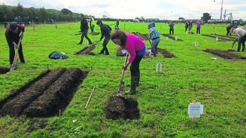Loy digging a new feature at this year's Tullamore Show