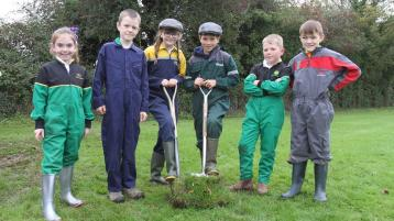 Final Push for Offaly School Sponsor-a-Sod campaign