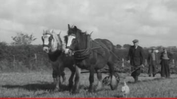 WATCH: Take a trip back in time to the 1954 World Ploughing Championships in Killarney