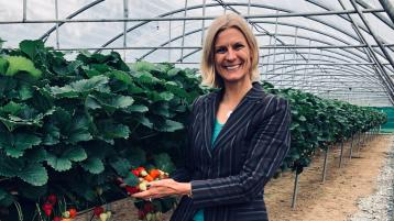 Offaly Minister welcomes the start of strawberry season