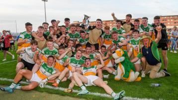 Heroic Offaly return to the promised land at last