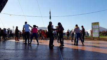 WATCH| Stop the world, there's jiving at the Ploughing!