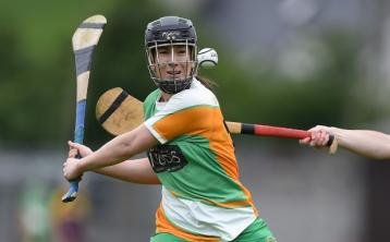 Watkins and Cleary keep Offaly in Division 1 with impressive win over Wexford