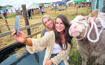 Tullamore Show gearing up to be another fantastic success - Nolan
