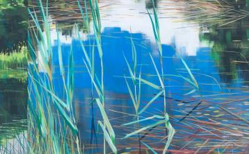 Offaly artist to unveil stunning new exhibition in Tullamore