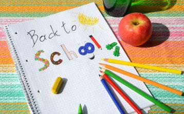 Back To School Allowance applications need to be available to families not online -TD
