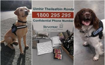 Detector dogs Bailey and Sam sniff out over €30,000 worth of drugs destined for five counties