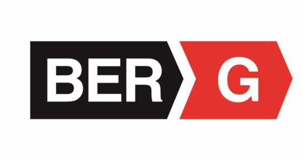 Image result for ber g