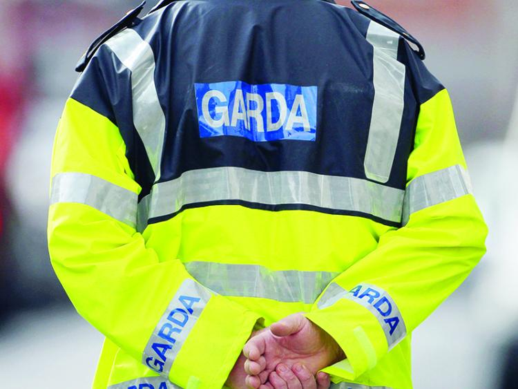 Man's Body Found Near Dunboyne