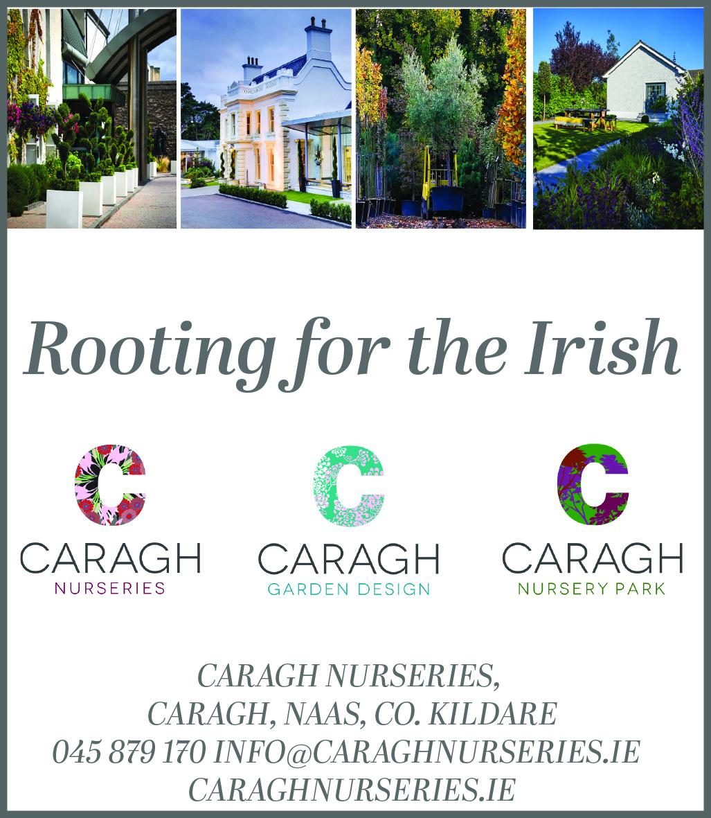 Kildare, Ireland Networking Events | Eventbrite